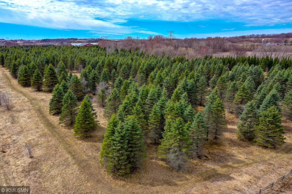 1550 Majestic Pines Trail Property Photo - Afton, MN real estate listing