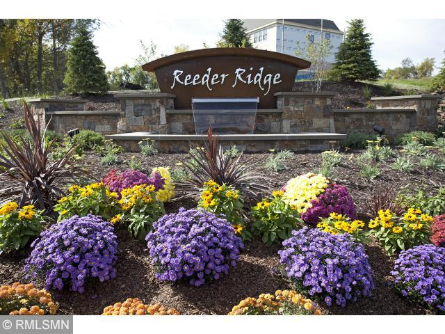 10020 Azure Skies Property Photo - Eden Prairie, MN real estate listing