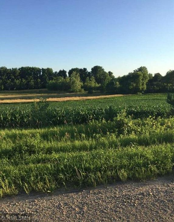 TBD Lot 3 Greenland Road Property Photo - Elysian Twp, MN real estate listing