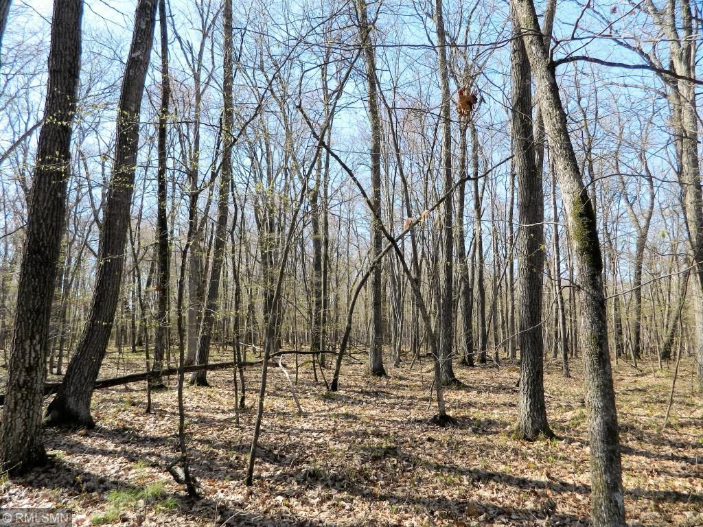 Lot 17 103rd Property Photo - Frederic, WI real estate listing