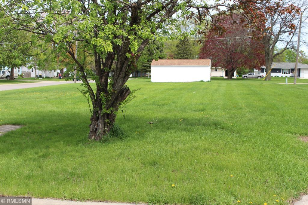 221 S 4th Street Property Photo - Bird Island, MN real estate listing