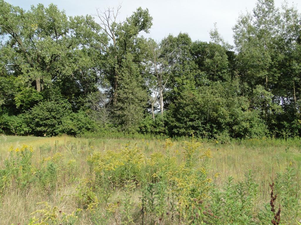 306 Grand Drive Property Photo - Lake City, MN real estate listing