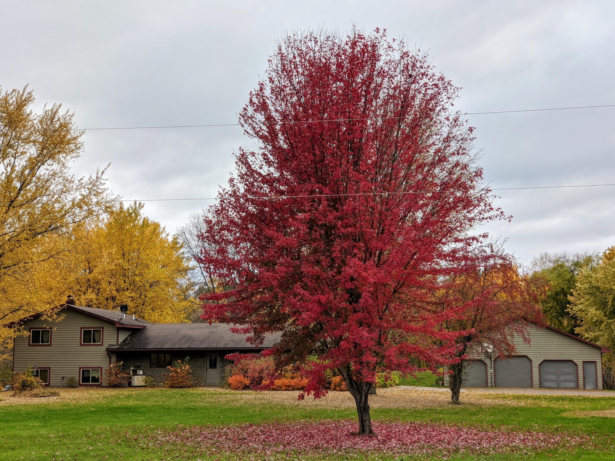 20932 King Rail Drive Property Photo - Hinckley, MN real estate listing