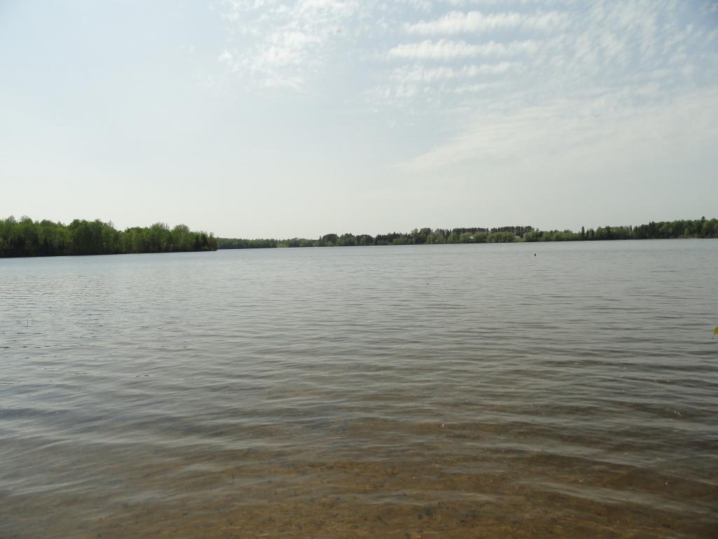 xxxx Loon Lake Road Property Photo - White Twp, MN real estate listing