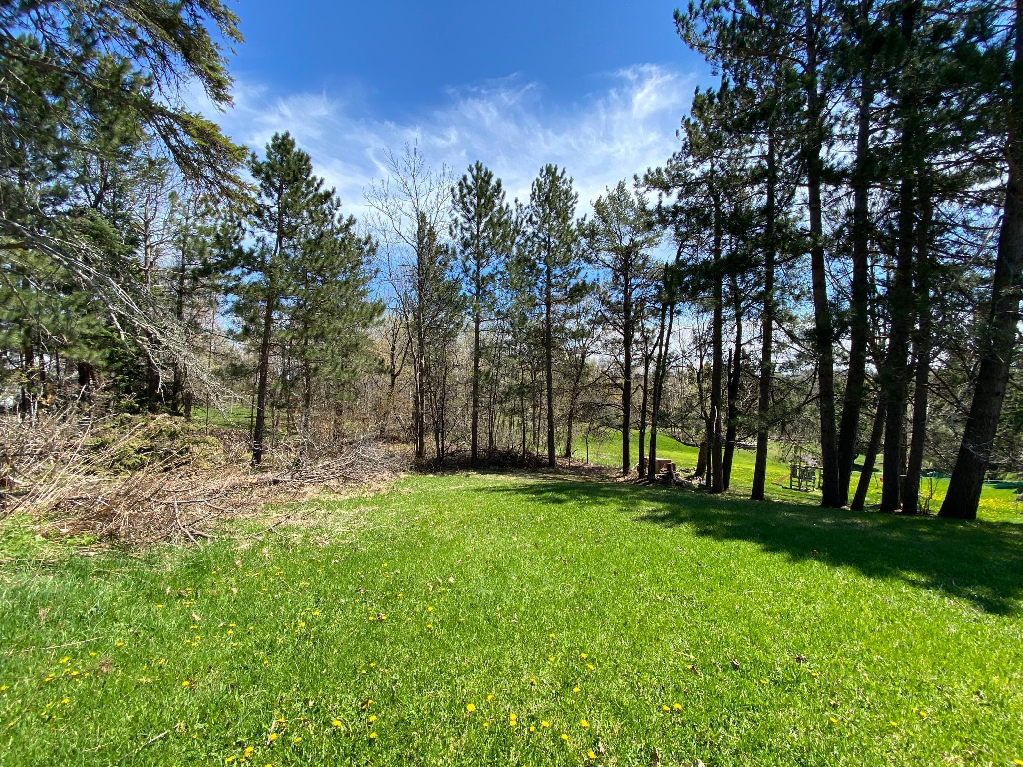 xxx Stroll Avenue Property Photo - Duluth, MN real estate listing