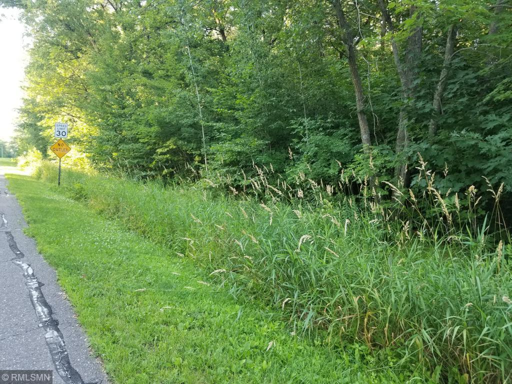 Lot 4.1 Xerus Street NW Property Photo - Zimmerman, MN real estate listing