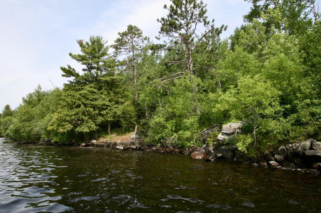 TBD Pine Island Property Photo - Tower, MN real estate listing