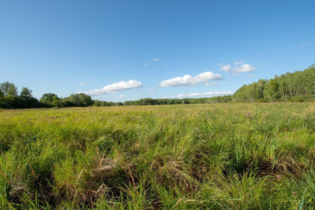 Tbd Meadowview Road Property Photo