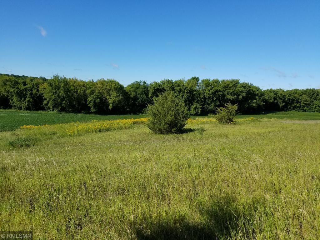 TBD County Road 115 Property Photo - Saint Augusta, MN real estate listing