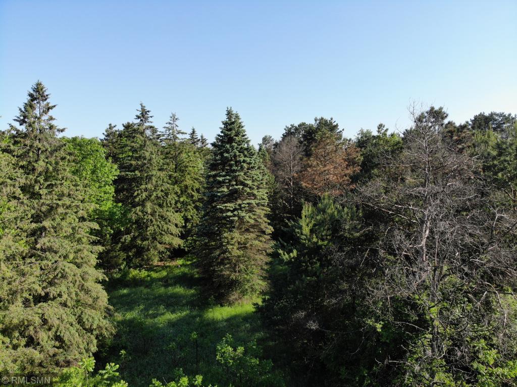 XXX3 5th S Property Photo - Lakeland, MN real estate listing