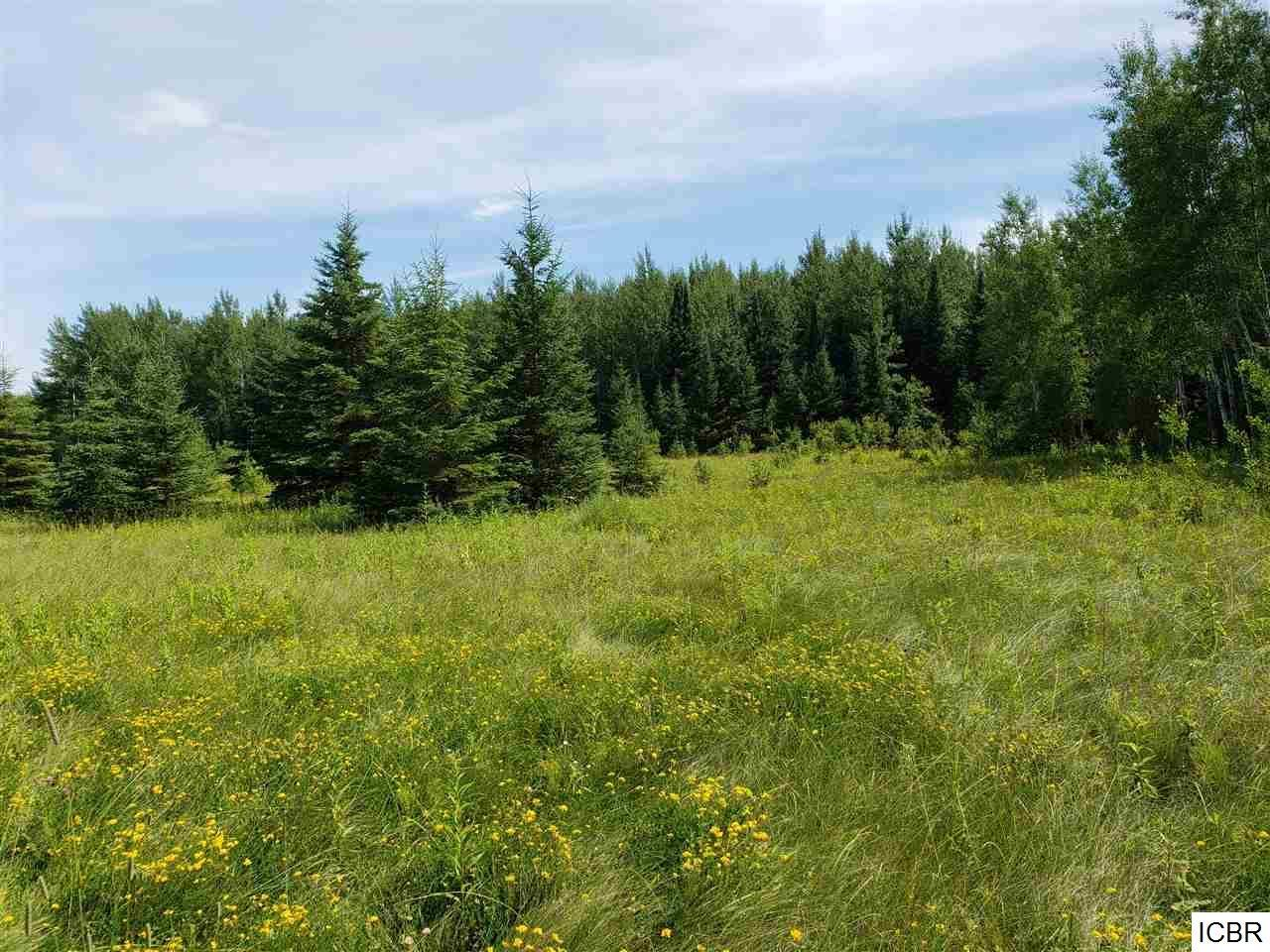 33310 COUNTY RD 42 Property Photo - Effie, MN real estate listing