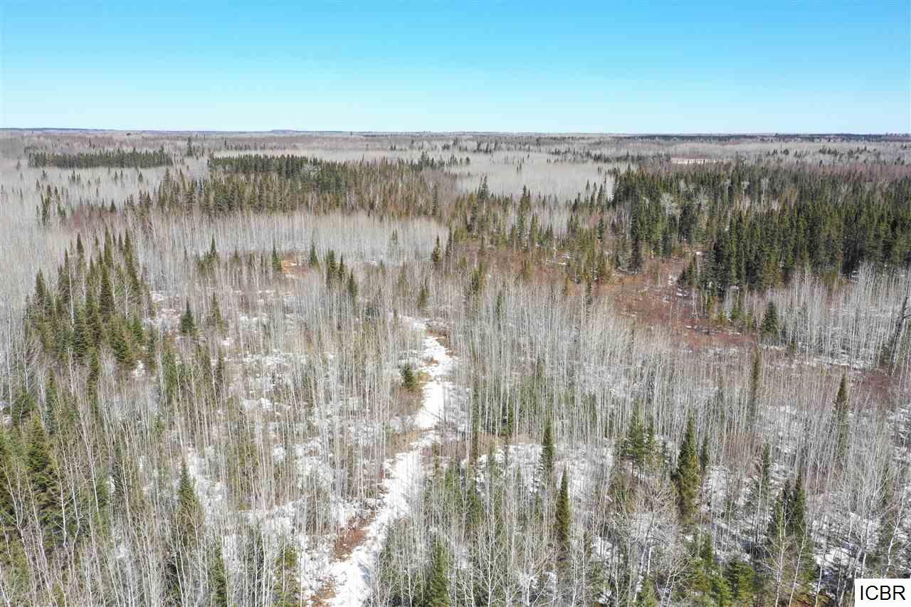 XXX SETHERS RD Property Photo - Orr, MN real estate listing