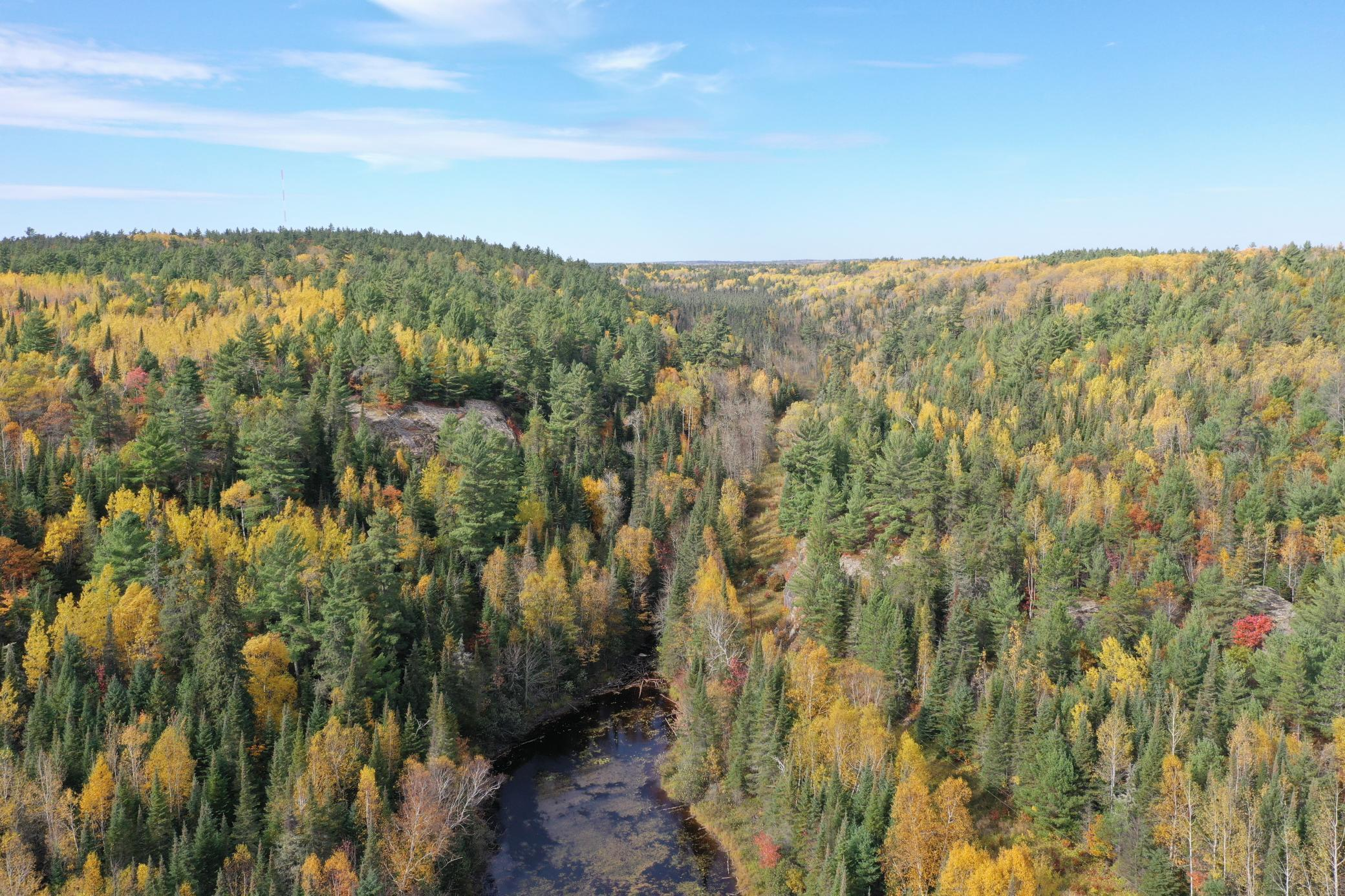 TBD ASH RIVER TRL Property Photo - Orr, MN real estate listing