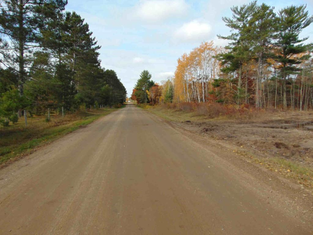TBD 190th Avenue Property Photo - Akeley, MN real estate listing