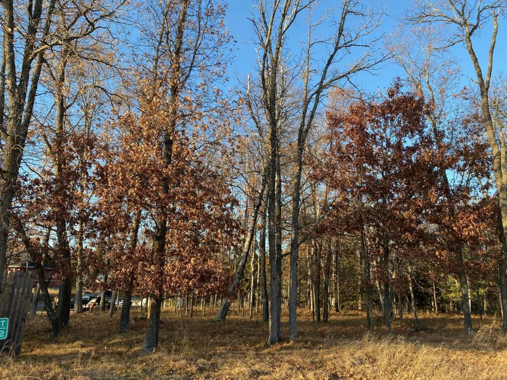 Lot2.Block1 Bald Eagle Trail Property Photo - Crosslake, MN real estate listing