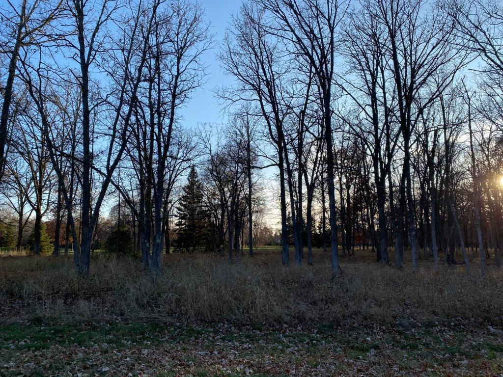 Lot8.Block2 Talon Trail Property Photo - Crosslake, MN real estate listing
