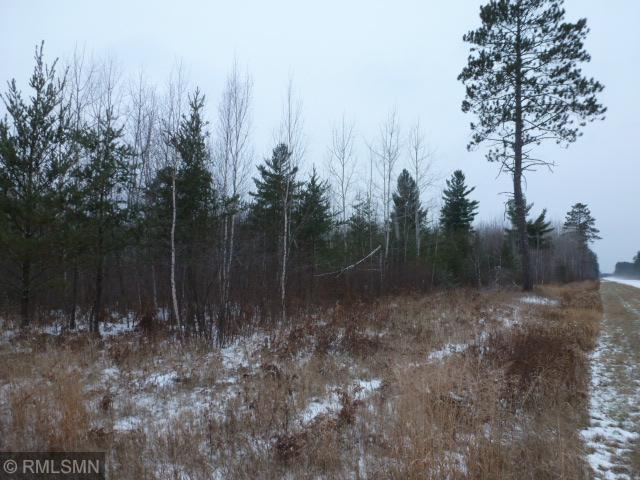 TBD Scenic Hwy 7 Property Photo - Bigfork, MN real estate listing