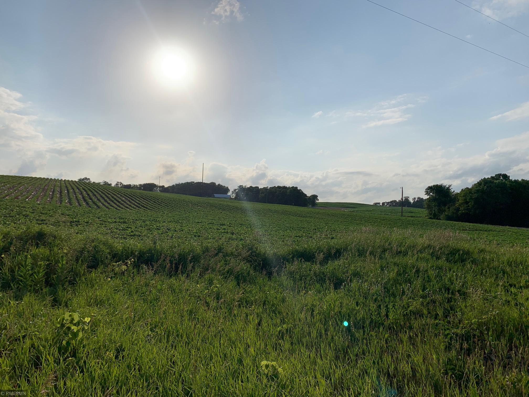 xxx MN Hwy 24 Property Photo - Forest City Twp, MN real estate listing