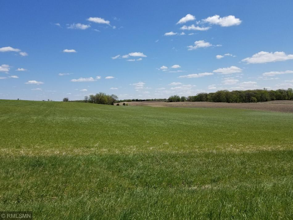 XXX County Road 41 Property Photo - Cologne, MN real estate listing