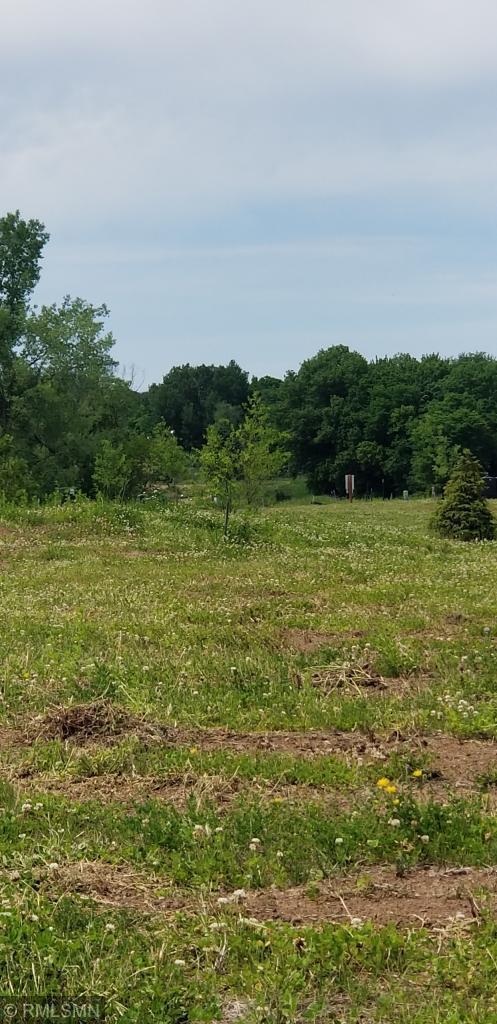 11319 Latrobe Lane N Property Photo - Lake Elmo, MN real estate listing