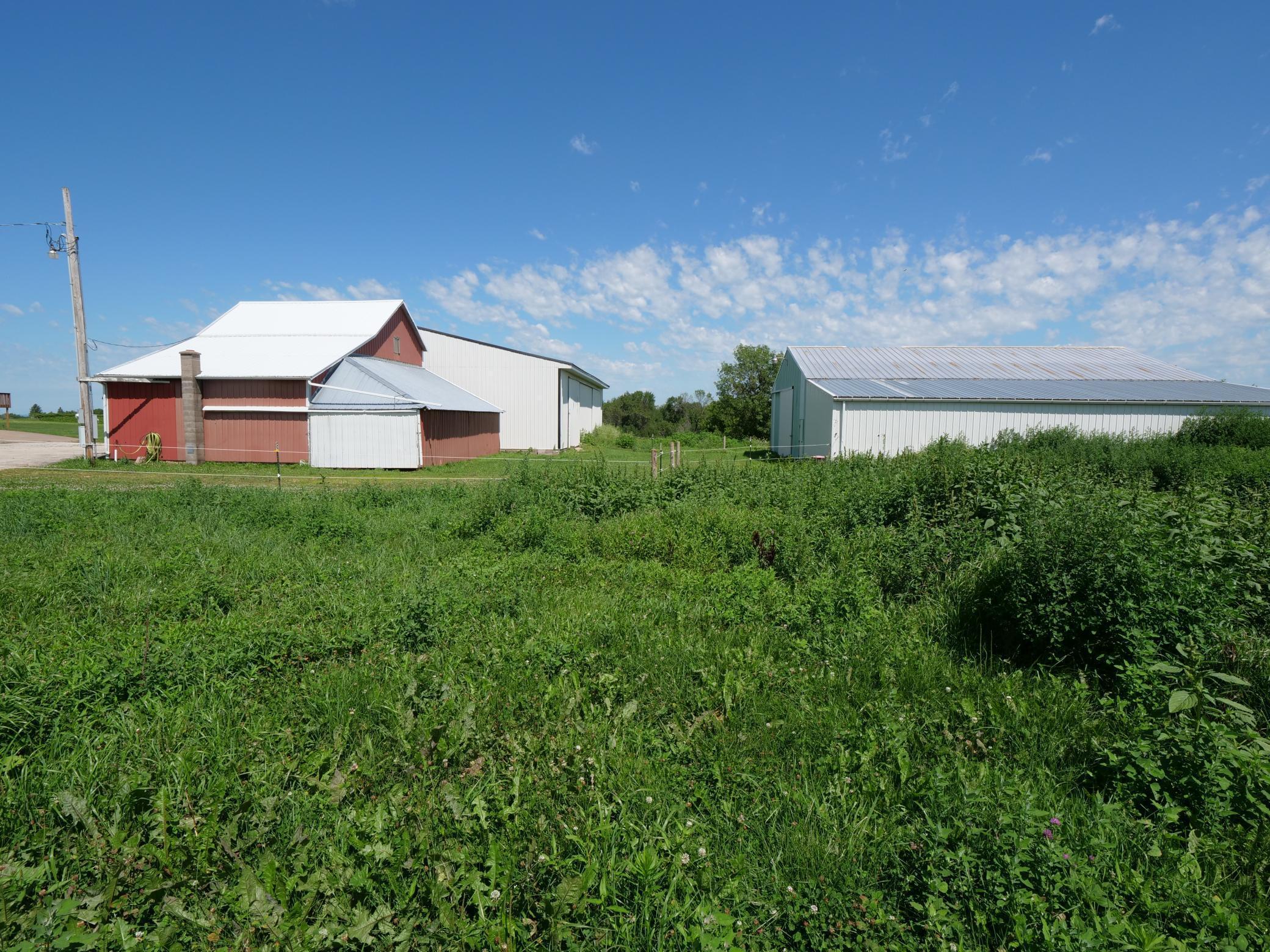 W1774 County Road E Property Photo - Alma, WI real estate listing