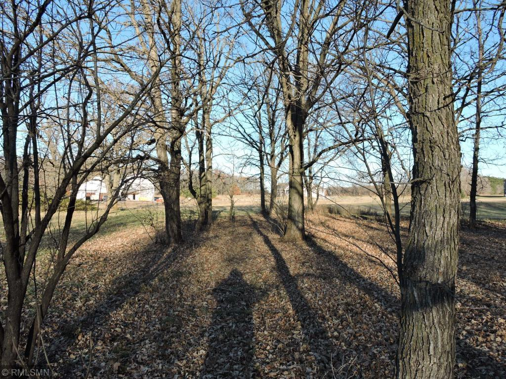 Lot 27, Blk 2 122nd SE Property Photo - Becker Twp, MN real estate listing