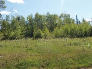 Lot 4 Bluff Creek Trails Property Photo