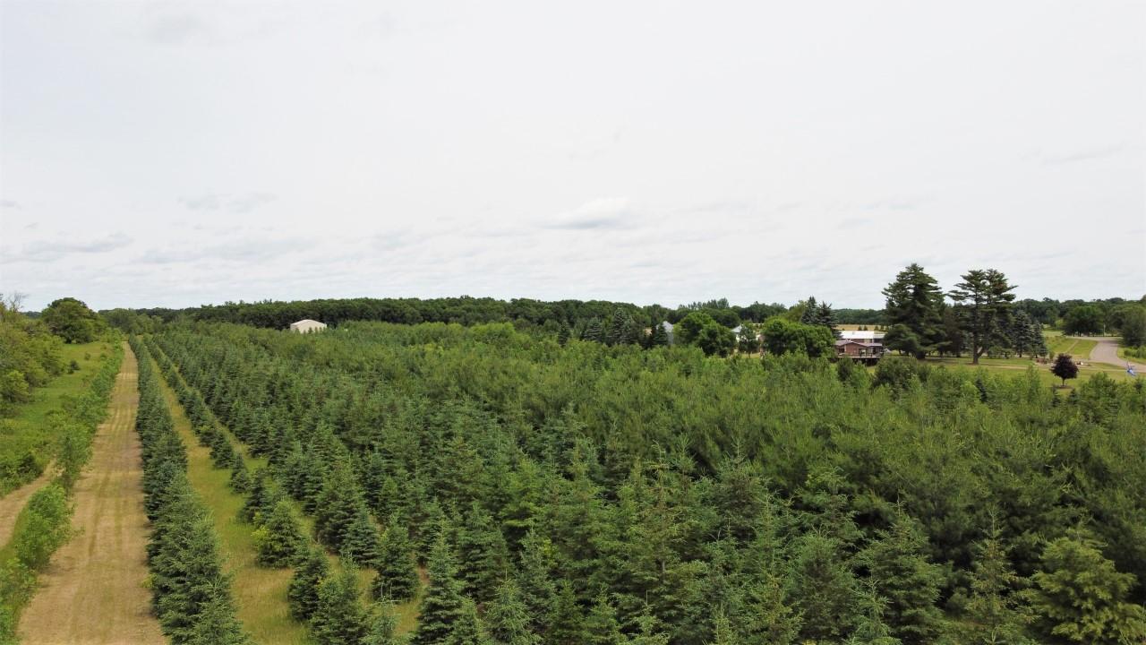 XXXX Little Pine Lake Property Photo - Harris, MN real estate listing