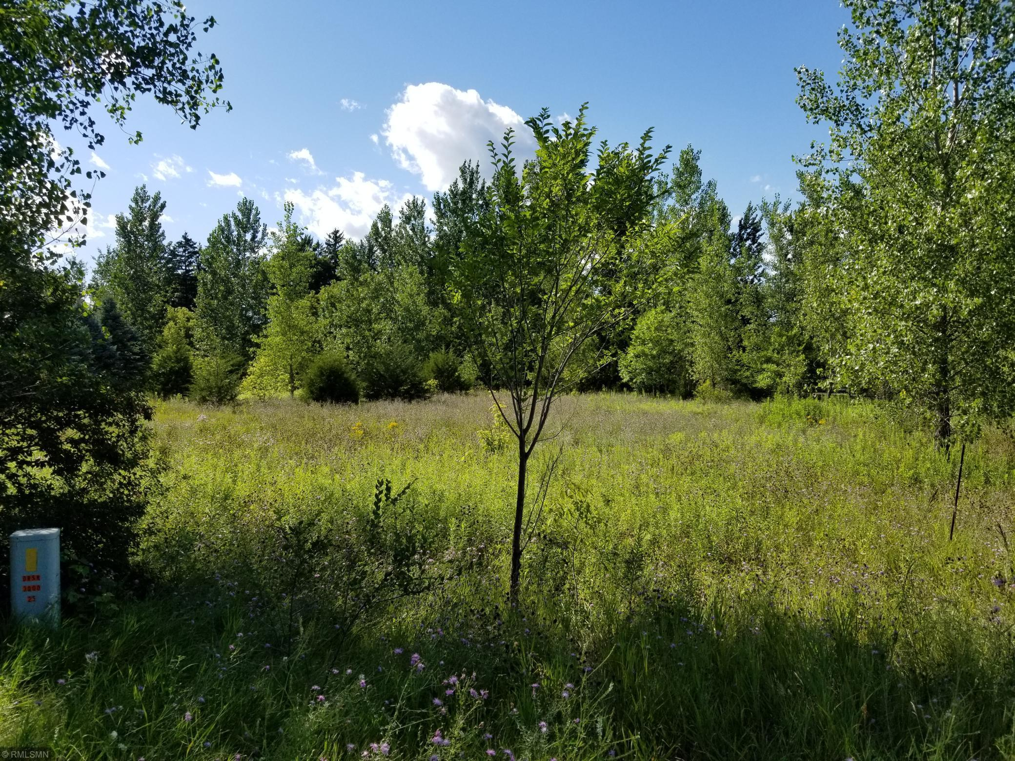Lot 13 235 Street Property Photo - Osceola Twp, WI real estate listing