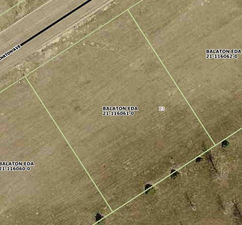 4021 Lake Yankton Avenue Property Photo - Balaton, MN real estate listing