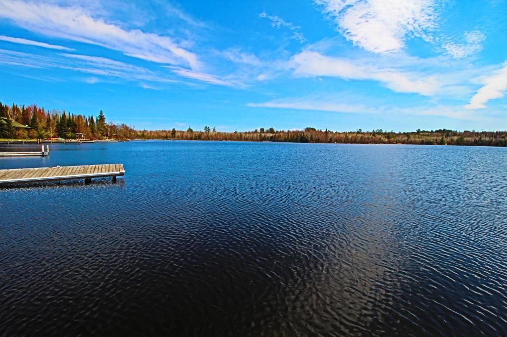 7460 Randa Property Photo - Orr, MN real estate listing