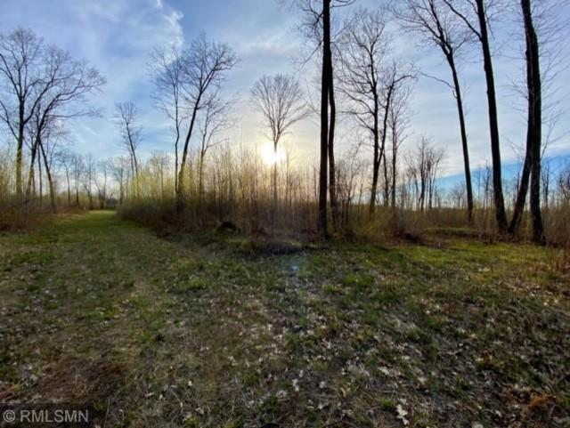 XXX Ivory Street Property Photo - Hay Brook Twp, MN real estate listing
