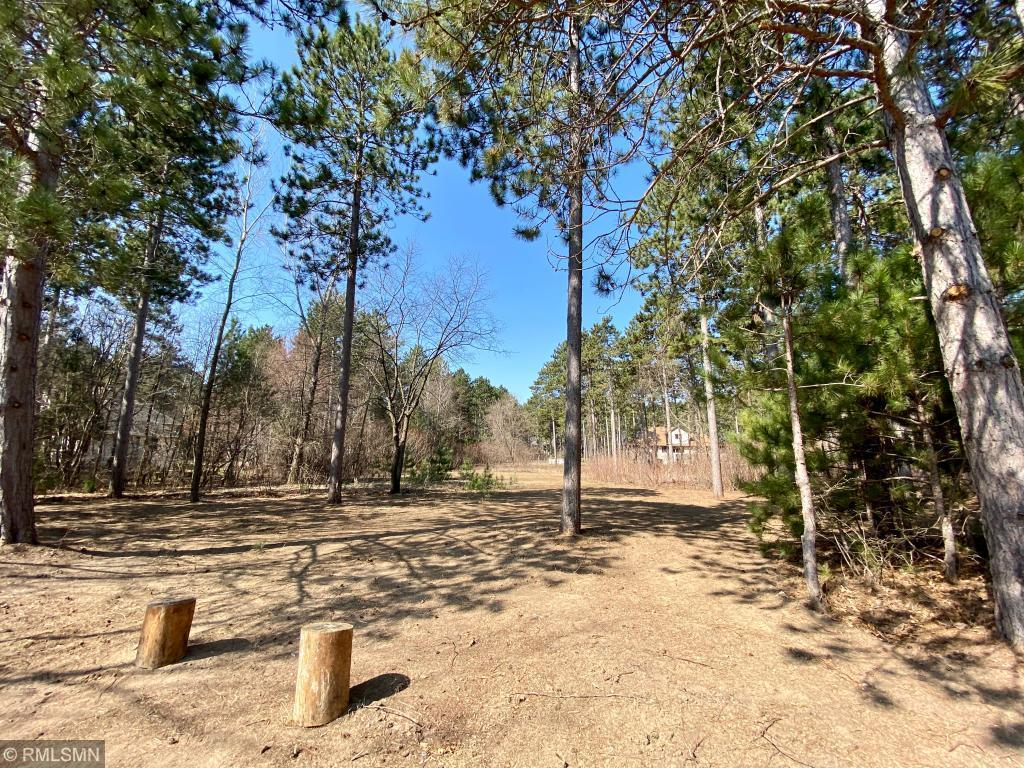 Lot 3 Blk 1 Guthrie Avenue Property Photo - North Branch, MN real estate listing