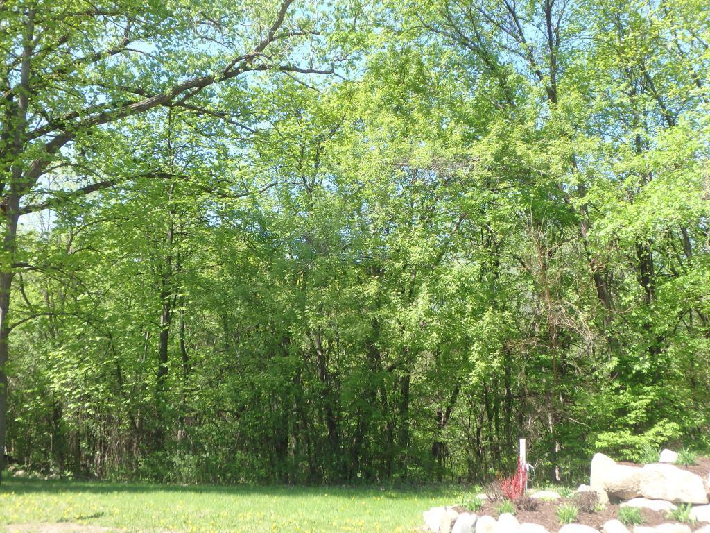 412 4th W Property Photo - Carver, MN real estate listing