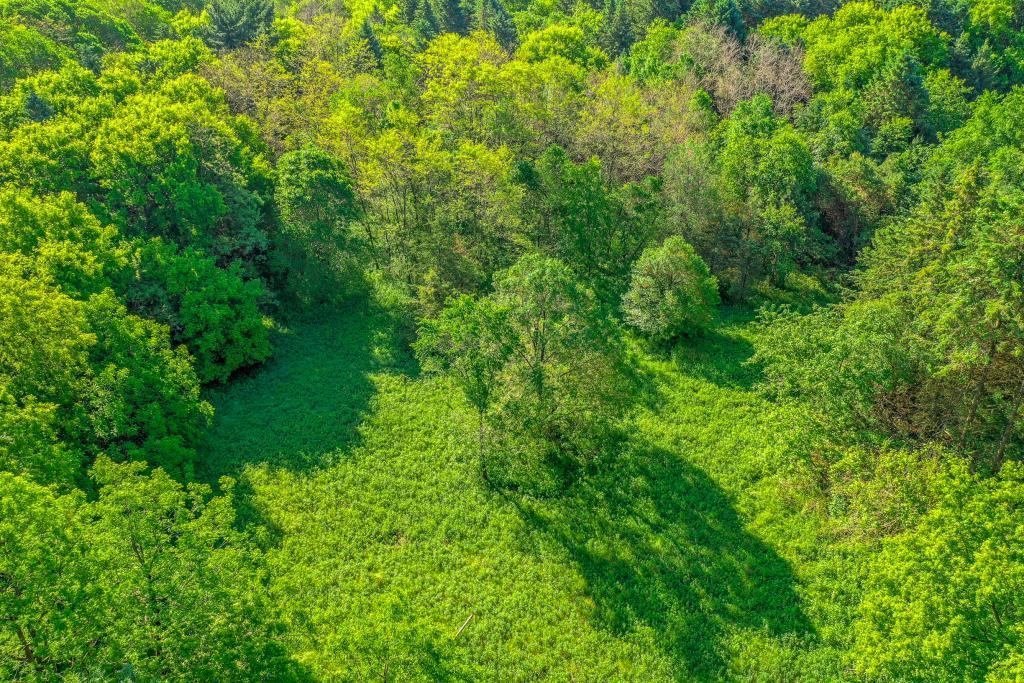 15XXX Afton Hills S Property Photo - Afton, MN real estate listing