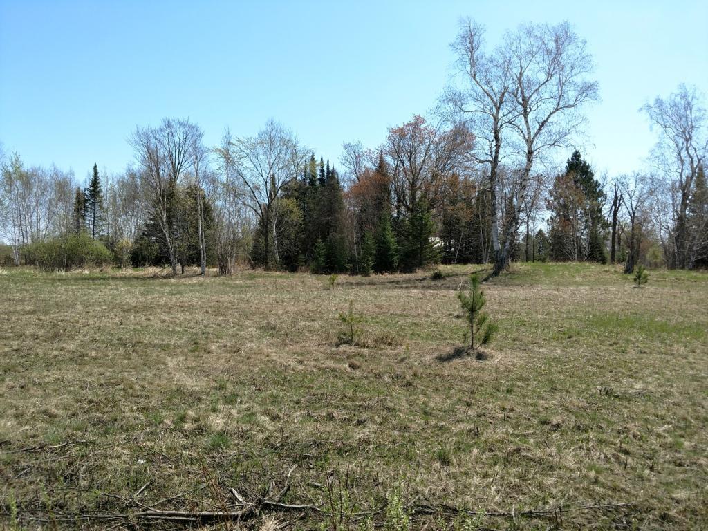 6064 Woodbury Property Photo - Wright, MN real estate listing