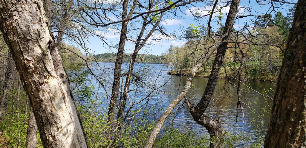 TBD Gilbert Lake Property Photo - Brainerd, MN real estate listing