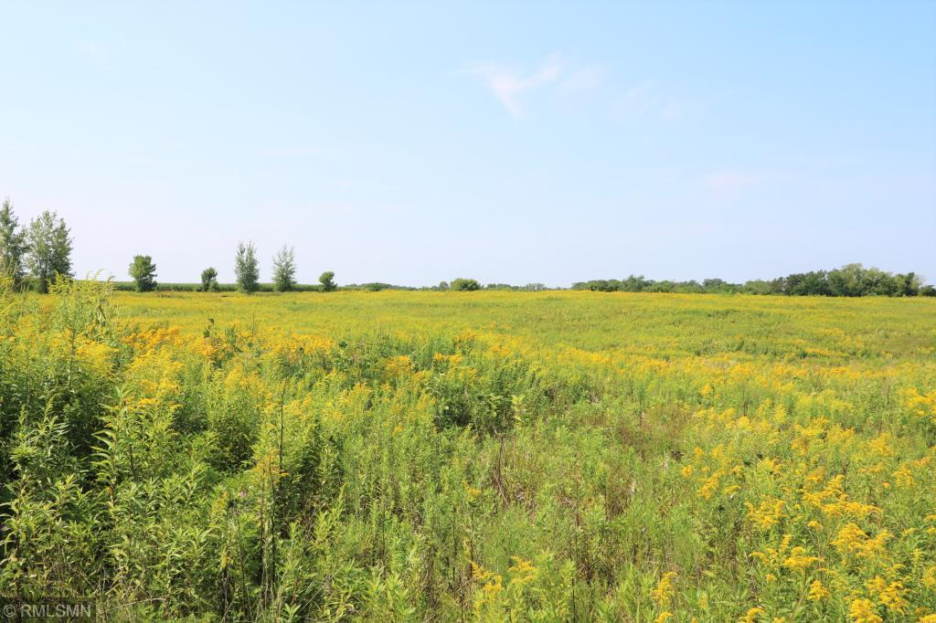 Lot 1 Blk 1 708th Street Property Photo - Lake City, MN real estate listing