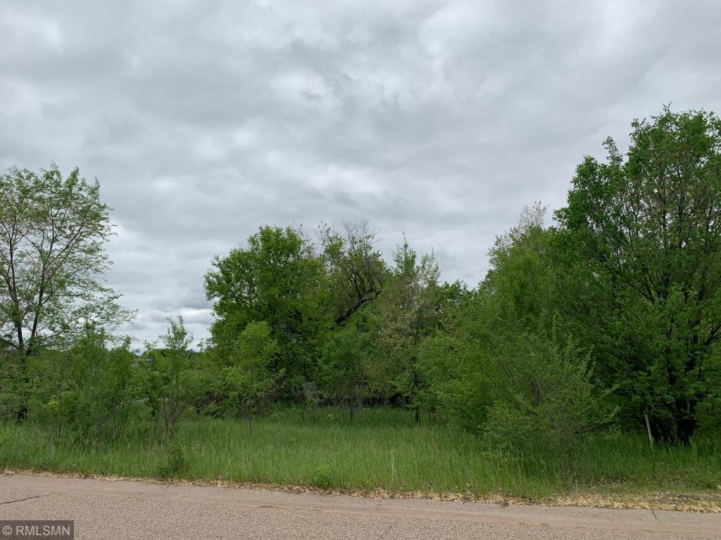 XXXXX BALTIMORE NE Property Photo - East Bethel, MN real estate listing