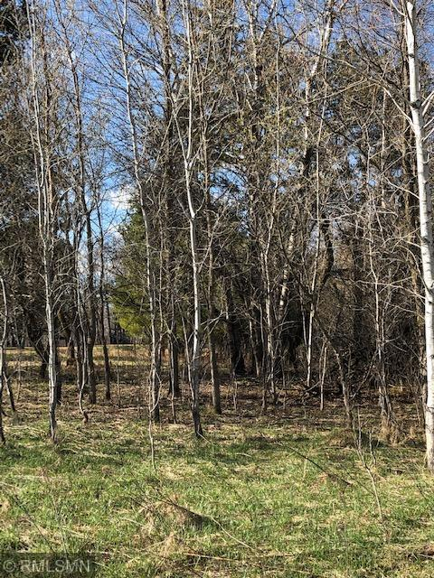 TBD Buck Rd Property Photo - Hinckley, MN real estate listing
