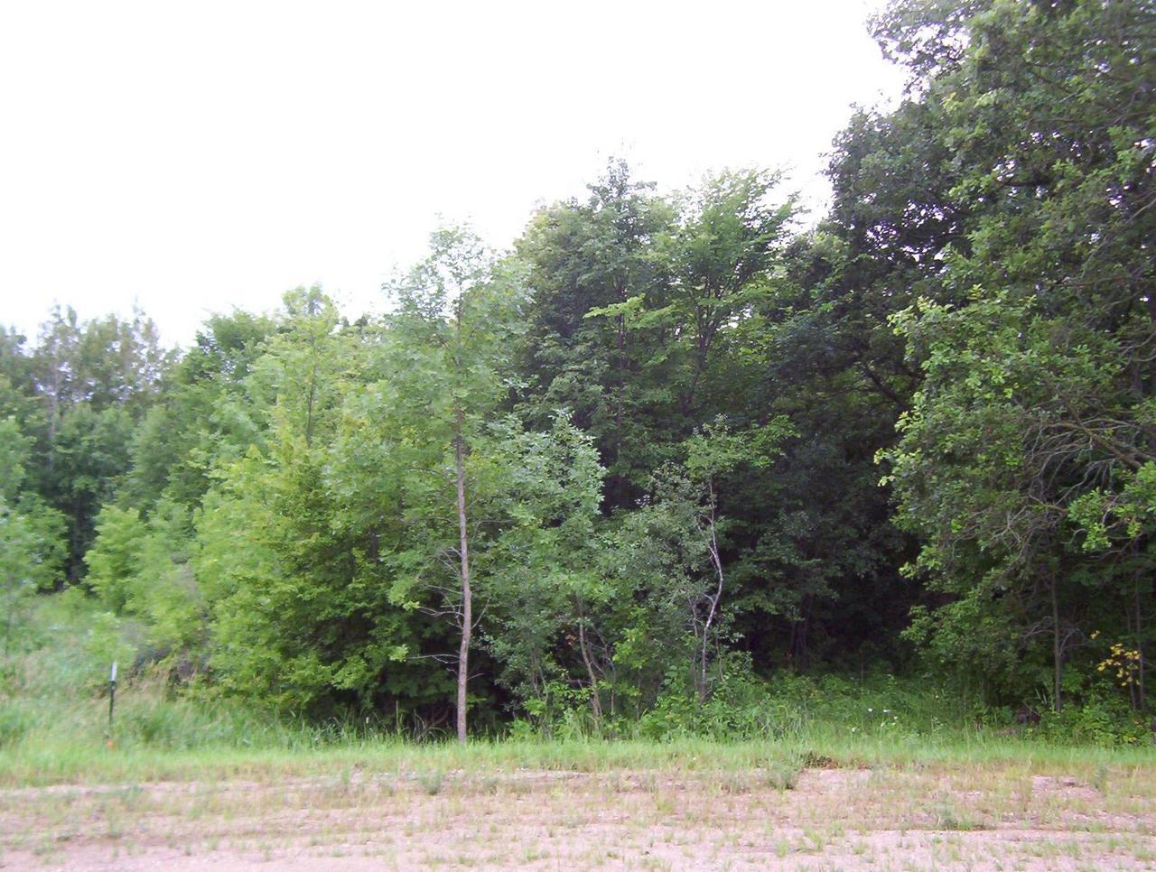 6 N. Lake Aldrich Property Photo - Brandon, MN real estate listing