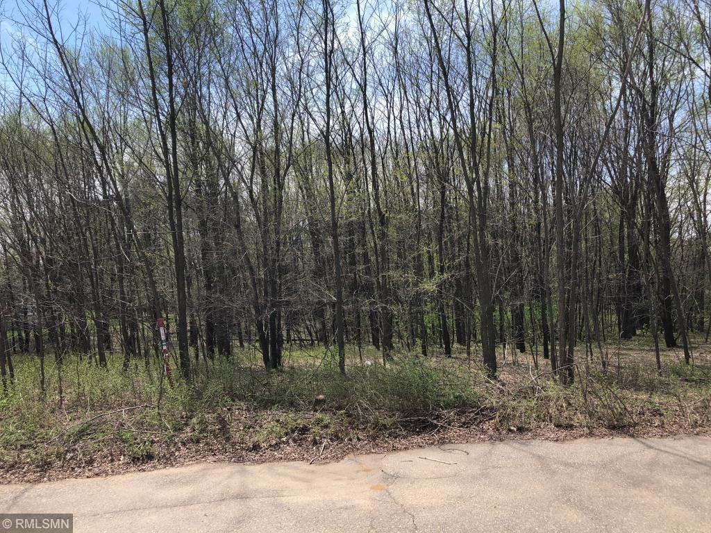 Lot 5 Walnut Ct Property Photo - Pepin, WI real estate listing