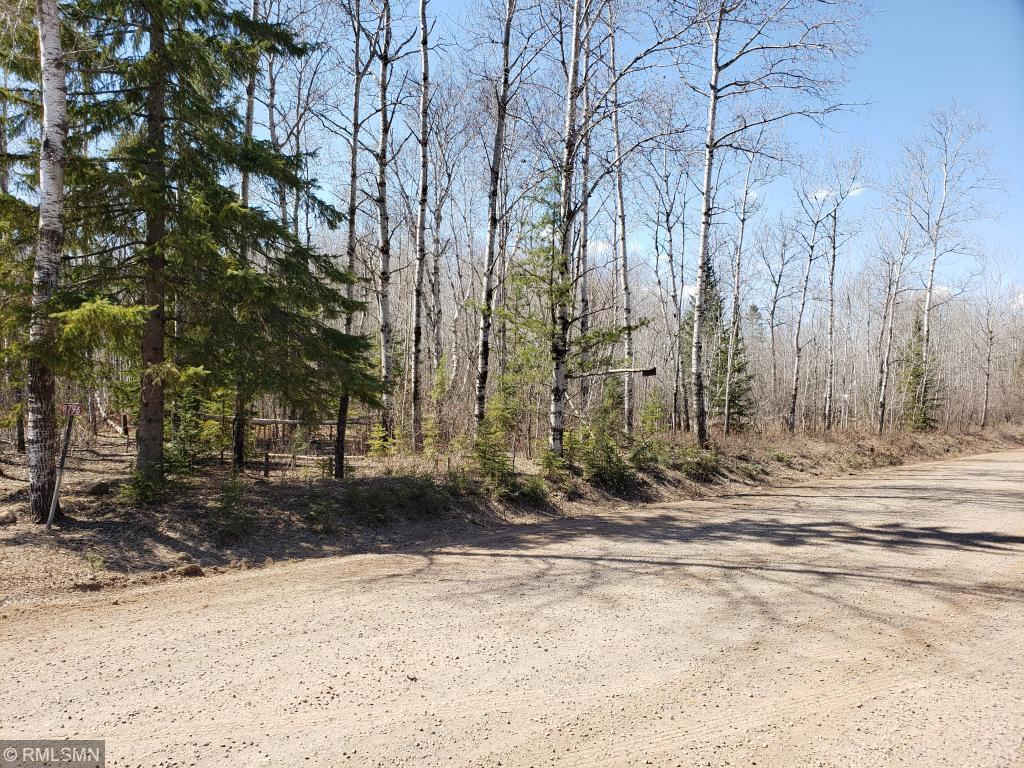 XXX McCamus Road Property Photo - Brookston, MN real estate listing