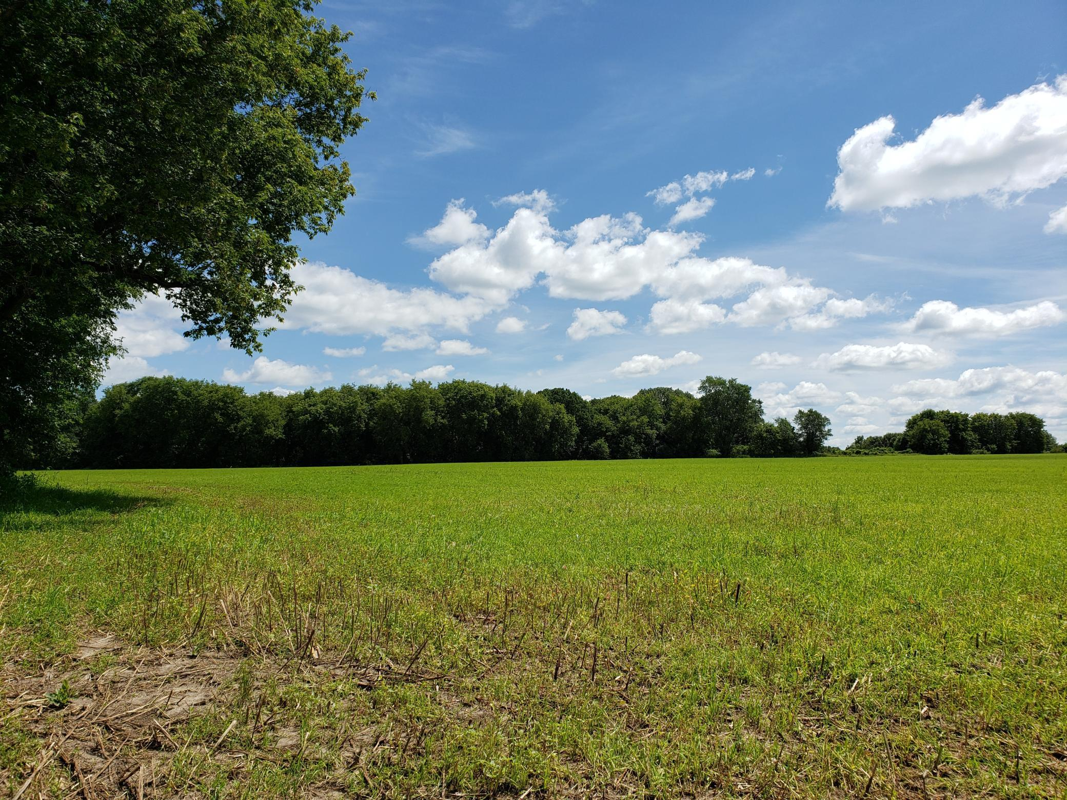 Lot 2 State Highway 15 Property Photo