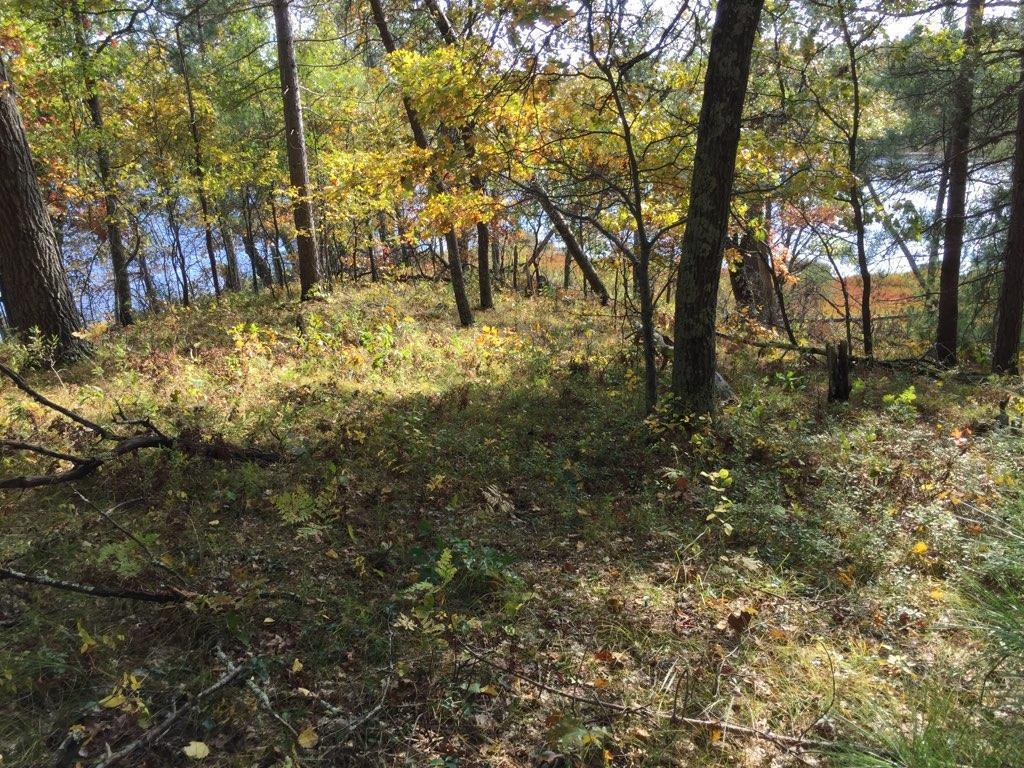 00 Dock Lake Road Property Photo - Rusk Twp, WI real estate listing