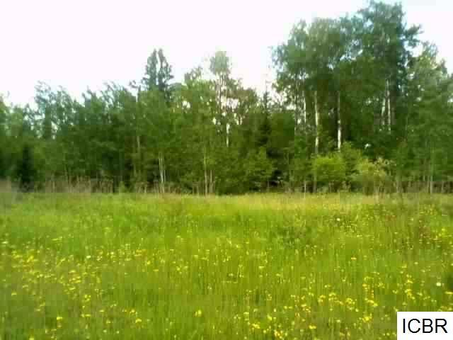 TBD RIVER VIEW DR Property Photo - Hibbing, MN real estate listing