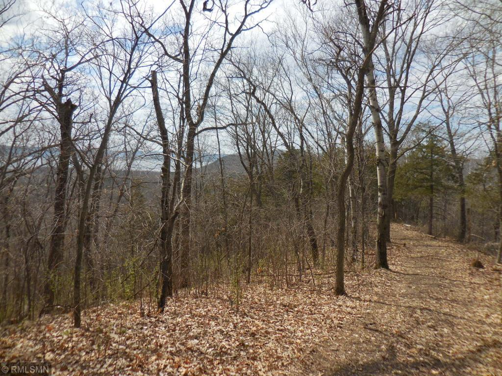 74 acres +- Moline Lane Property Photo - Pepin, WI real estate listing