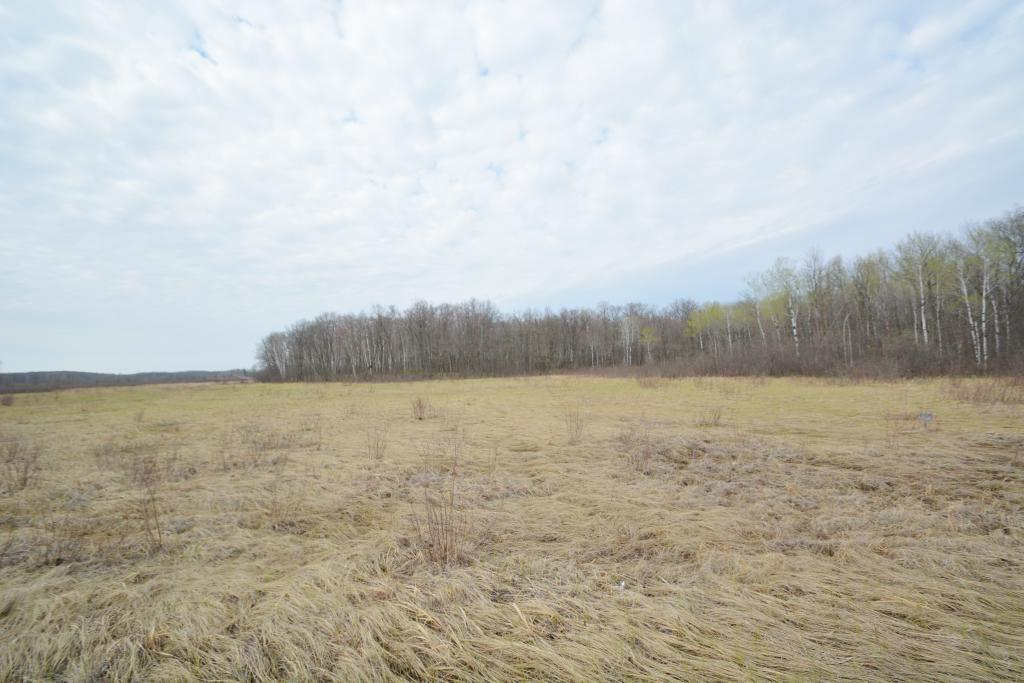 17164 State Highway 27 Property Photo