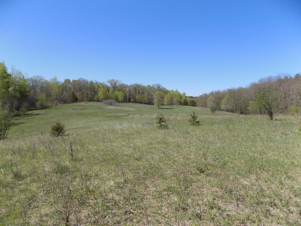 XXX Rolling Hills Trail Property Photo - Hudson, WI real estate listing