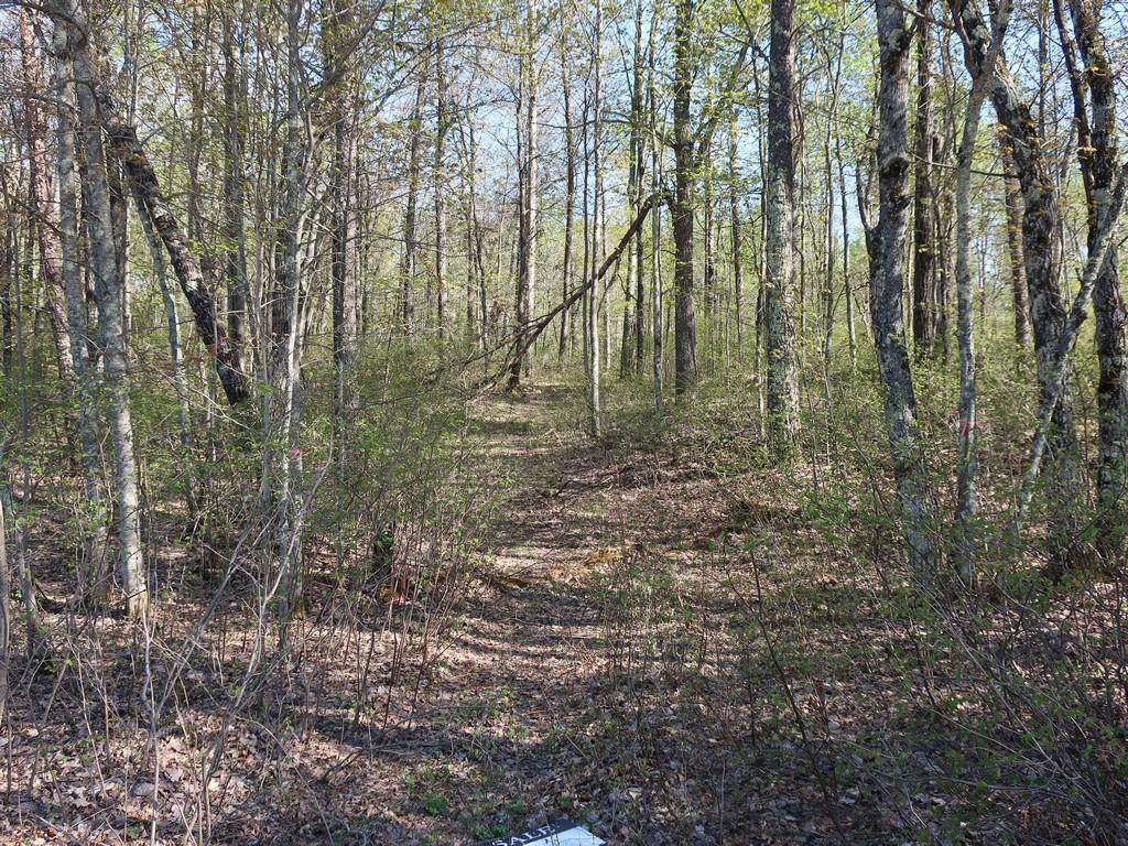 xxx Bramer Property Photo - Trego, WI real estate listing